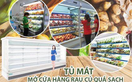 Mở cửa hàng rau củ quả sạch nên mua tủ mát nào?