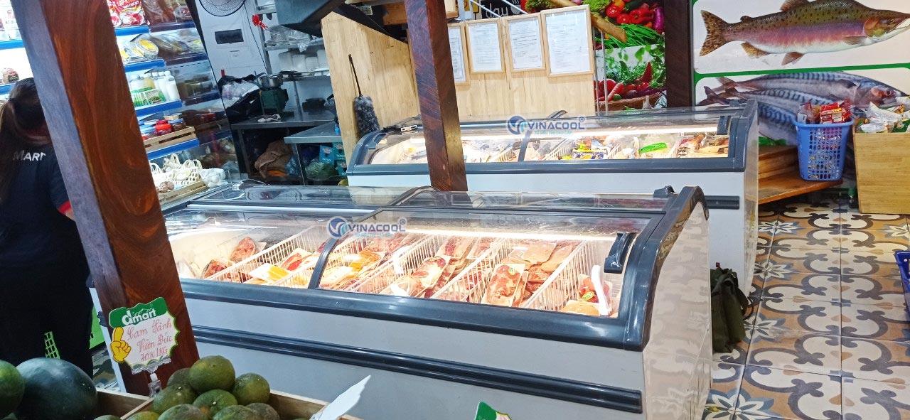 mô hình cửa hàng thực phẩm đông lạnh