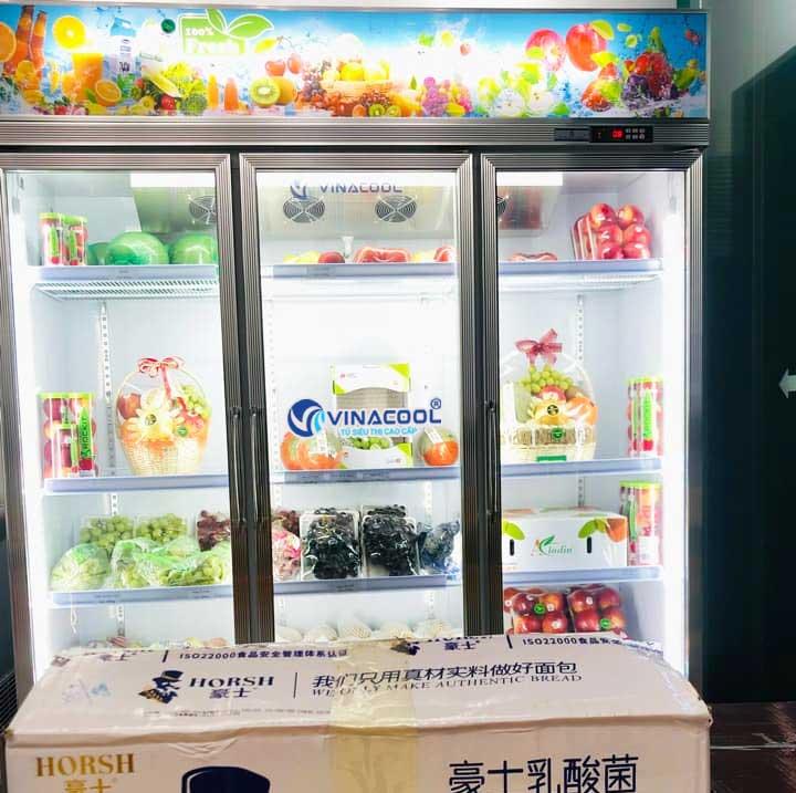 tủ bảo quản trái cây 3 cánh kính Vinacool