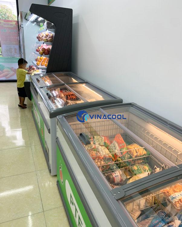 Tủ đông lạnh Vinacool