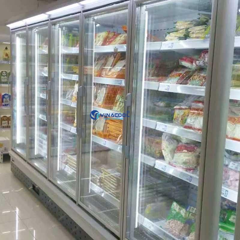 Tủ đông trưng bày thực phẩm đứng cao cấp