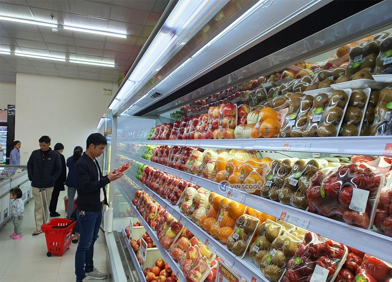 Tủ siêu thị không cửa cao cấp Vinacool