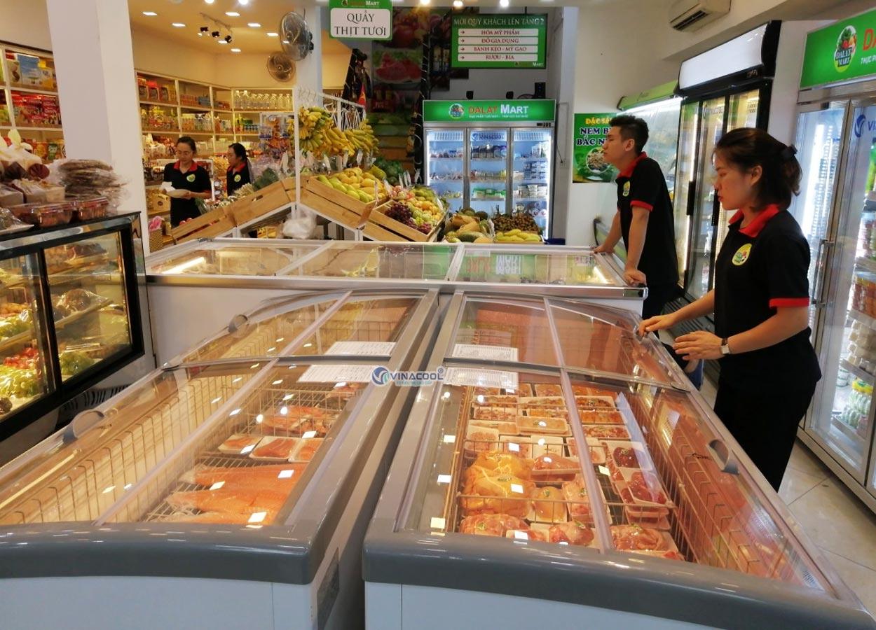 Tủ đông trưng bày thực phẩm Vinacool SLGTP4-1122VC