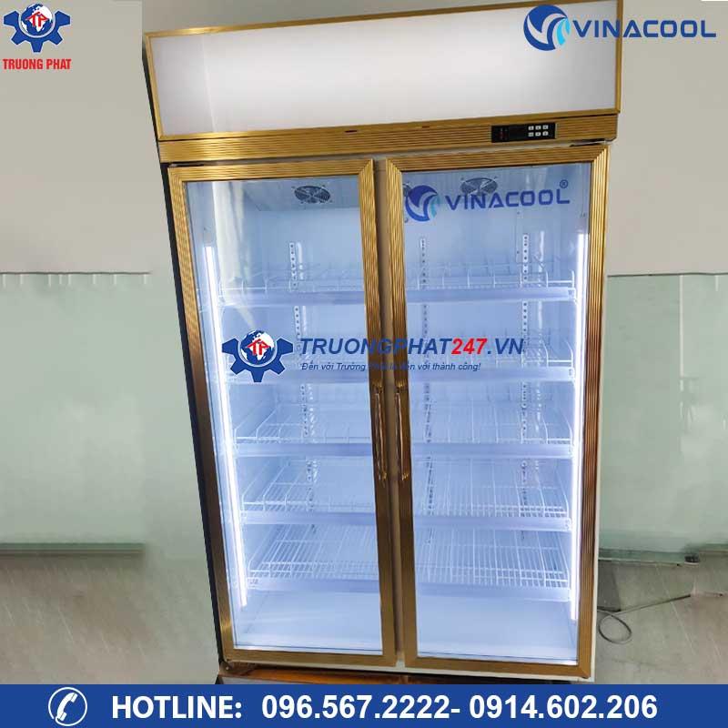 Tủ mát 2 cánh kính đựng trái cây Vinacool LG-126