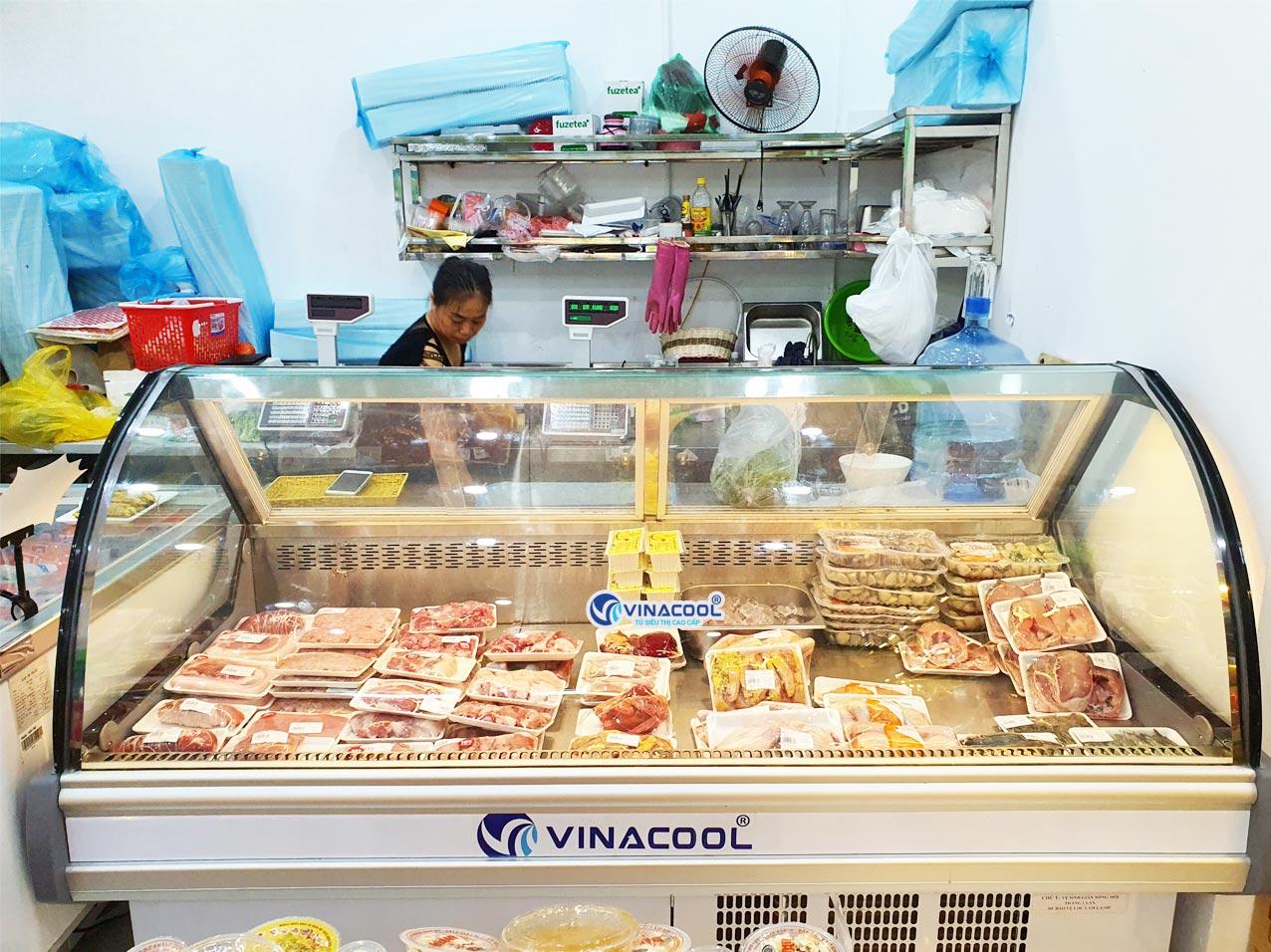 Tủ mát bảo quản thịt tươi sống có sấy kính mặt trước Vinacool